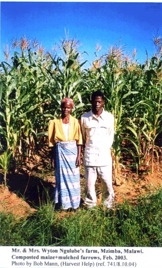 Mr & Mrs Wyton Ngulube's Farm >